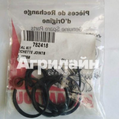 Ремкомплект тормозного цилиндра Маниту 782418