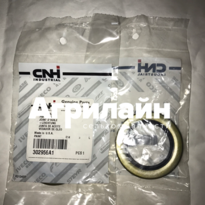 Сальник Case NewHolland CNH 302956A1